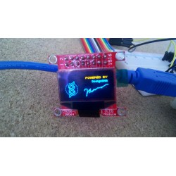 Mini-OLED Module (Dual Color)