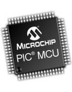 Catégorie Microchip - BiF : PIC12C508A-04P , PIC12C509A-04P , PIC12F508-I/P , PIC12F629I/P , PIC12F629I/SN , PIC12F675-I/P , ...